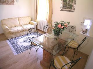 Roof Terrace charming apartment in Florence centre - Florence vacation rentals