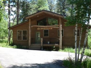 Moose Trail Lodge - Black Hills and Badlands vacation rentals