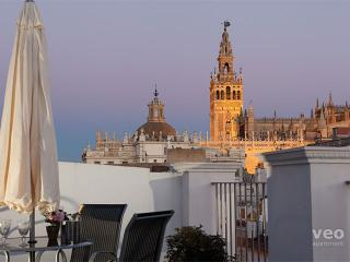 García Vinuesa | One-bedroom, shared terrace - Seville vacation rentals