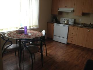 2+1 bedroom fully fernished apartment - Saint John's vacation rentals