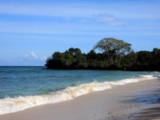 Near Diani Beach,  Secluded Villa!!! - Diani vacation rentals