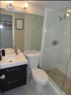 New Bathroom - South Beach, Miami - Miami Beach - rentals