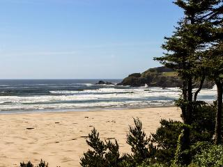 Agate Beach Oceanfront Suite A - Newport vacation rentals