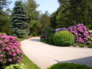 PRIVATE OSTERVILLE ESTATE - Osterville vacation rentals