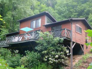Listen to the Sound of the Falls Melody - Bryson City vacation rentals