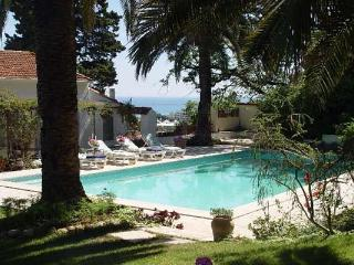 Ocean view from this mix of Bastide and NYC loft. AZR 244 - Cannes vacation rentals
