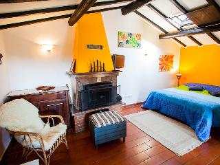 Tipical rural cottage in Tuscany hills - Scansano vacation rentals
