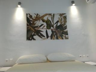 4  Bedroom Private House Bythe Beach With Sea View -(Up To 8 Guests) - Mykonos vacation rentals