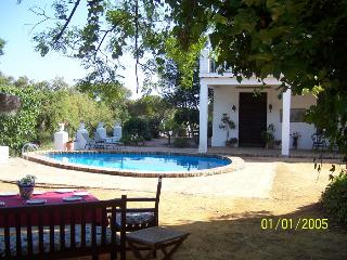 Tipical Andalusian country house: Moguer, Huelva - Moguer vacation rentals