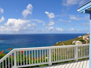Best Value on STJ 3 BR 3BA Million Dollar Views!!! - Saint Johnsville vacation rentals