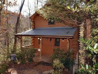Romantic 1 Bedroom Cabin Between Gatlinburg and Pigeon Forge with Hot Tub - Sevierville vacation rentals