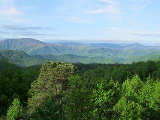 Gatlinburg Cabin in the mountains  BIG BEAR VIEW 706 - Sevierville vacation rentals