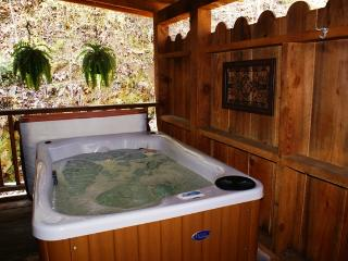 Honeymoon Hideaway - Smoky Mountain Cabin - Sevierville vacation rentals