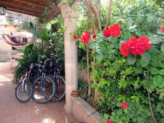 Ground floor in Palma de Mallorca - Palma de Mallorca vacation rentals