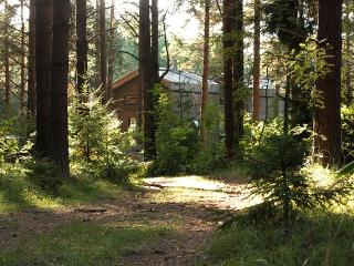 Surfhunt Accommodation Wofhouse - Parnu County vacation rentals