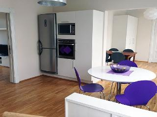 Central Street - Reykjavik vacation rentals