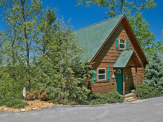 1 Bedroom Cabin Between Pigeon Forge and Gatlinburg with a Mountain View - Sevierville vacation rentals