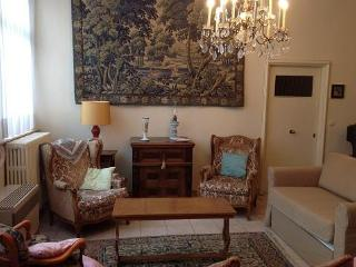 ID 2938 Elegant apartment of 130 sq.mt in Brussels - Venice vacation rentals