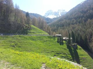 a lovely nest for small groups in the swiss alps - Valais vacation rentals