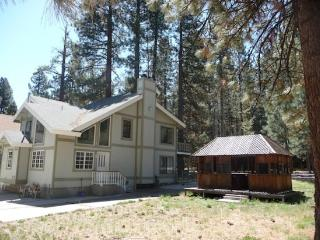 Sunny Mountain Paradise - Big Bear Lake vacation rentals