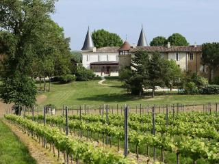 Experience life in a castle near Bordeaux - Lignan-De-Bordeaux vacation rentals