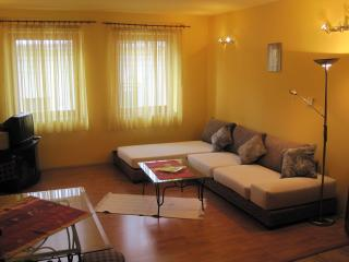 Big place in the city center!!! - Pecs vacation rentals