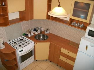 Apartment for renting and for vacation - Lodz vacation rentals