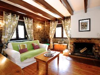 Cosy 1 bedroom apartment with fireplace - Andorra vacation rentals