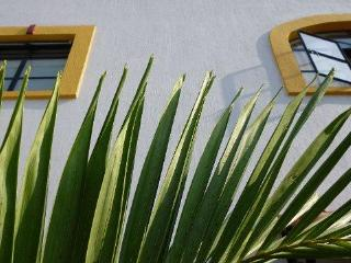 Bed and Breakfast Casa Colibris - Guadalajara vacation rentals