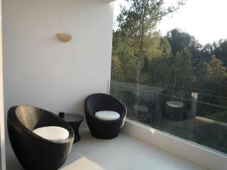 AQUARIUM VADELLA SAN 57 - Ibiza vacation rentals