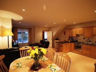 No 2 John Darcy Court - FREE WIFI & FREE access to the Leisure centre with pool - County Galway vacation rentals