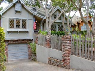 3593 - Newly Remodeled, Designer Interiors, Dog Friendly! - Pacific Grove vacation rentals