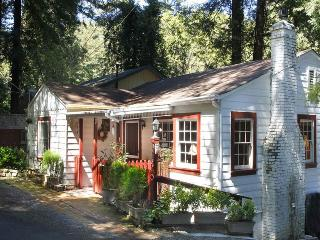 PURE JOY - Russian River vacation rentals