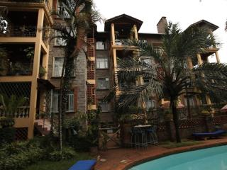 Woodmere Serviced & Furnished Studio Apt (Larger Available) Nairobi - Nairobi vacation rentals