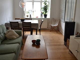 Newly renovated Copenhagen apartment at Noerrebro - Copenhagen vacation rentals