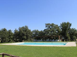VERDE APARTMENT panoramic gazebo / garden / pool - Pergine Valdarno vacation rentals