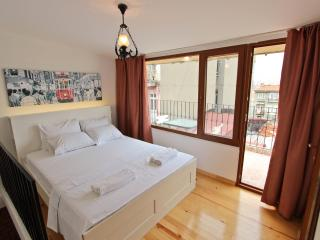 Lovely Dublex Flat with Terrace in Taksim-Beyoglu - Istanbul & Marmara vacation rentals
