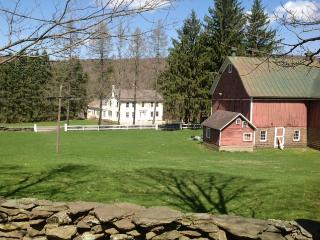 Catskill Home and 90 Acre Getaway - Treadwell vacation rentals