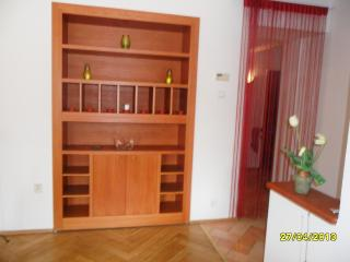 Charming sunny flat with its own sauna Down Town - Bohemia vacation rentals