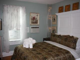 Bed & Breakfast - (Jacuzzi / Fireplace / Queen Bed) - Dr Mitchell Suite - Ellis House - Buffalo vacation rentals