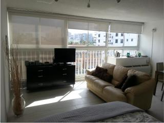 San Juan Lagoon View Studio at Condado - San Juan vacation rentals