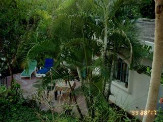 Privacy, Ocean, Tropical Jungle; it is Magic - Meade vacation rentals