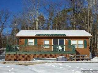 Beautiful Lakeside Cabin - Lake Ossipee - Lakes Region vacation rentals