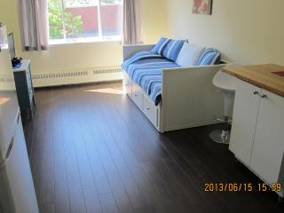 SOSHE 404 - newly renovated - Montreal vacation rentals