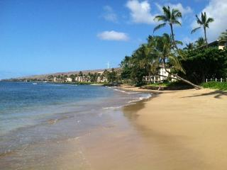 Makani A Kai A8 Oceanfront complex 1/1 Sleeps 4  Great Rates! - Kihei vacation rentals