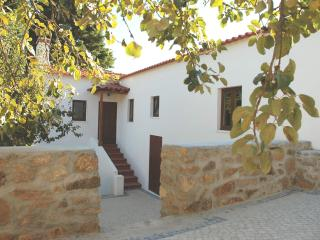 Cosy Holiday Cottage - with all modern amenities - Figueiro dos Vinhos vacation rentals
