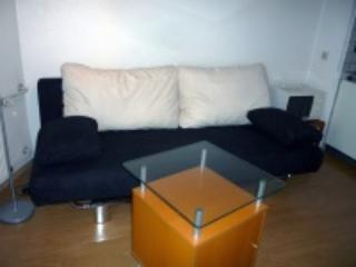 Comfortable sofa bed - Lovely appartment near the centre of Düsseldorf - Düsseldorf - rentals
