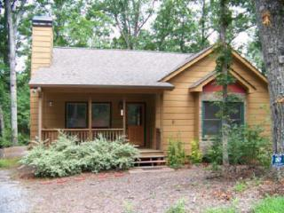 Welcome to Wildwood ~Pet Friendly & quiet retreat - North Georgia Mountains vacation rentals