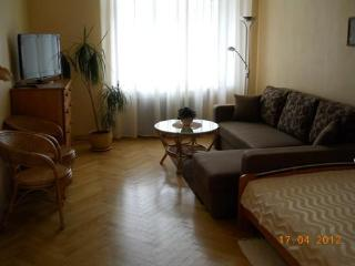 Apartment Terbata 85-4 City center. - Latvia vacation rentals