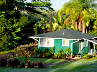 Now-Sep $145/nt. Last minutes still available! - Kapaa vacation rentals